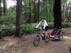 fabio bike trailer