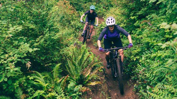 moutain biking para iniciantes